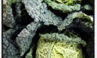 Winter vegetables - cabbage