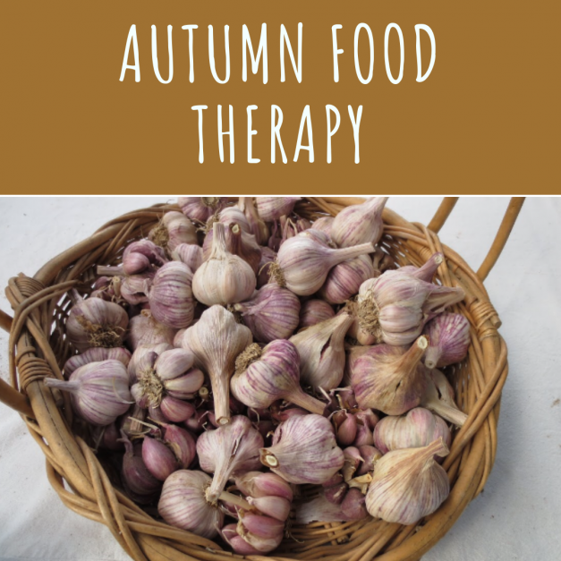 Autumn food therapy