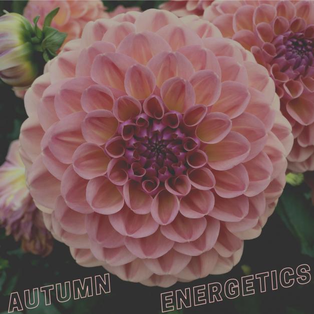 Autumn energetics